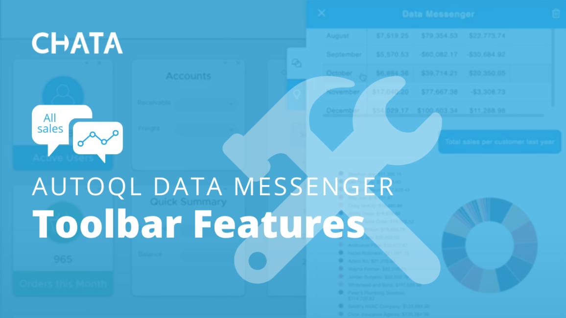 Conversational AI Resources: Toolbar Features AutoQL Data Messenger